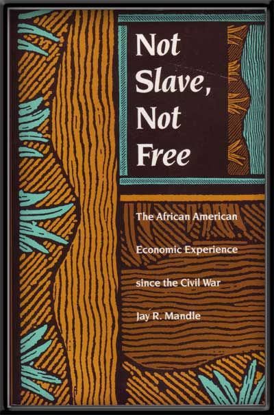 Not Slave, Not Free: The African American Economic Experience Since the Civil War. Jay R. Mandle.